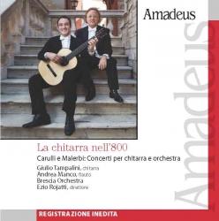 La chitarra nell'800 [Audioregistrazione] [: Carulli e Malerbi : concerti per chitarra e orchestra]
