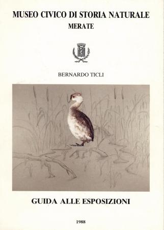 Guida alle esposizioni /Bernardo Ticli