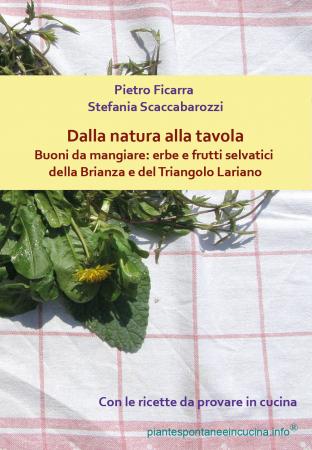 Dalla natura alla tavola. Buoni da mangiare: erbe e frutti selvatici della Brianza e del Triangolo Lariano