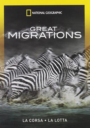 Great migrations. [1.] La corsa ; La lotta